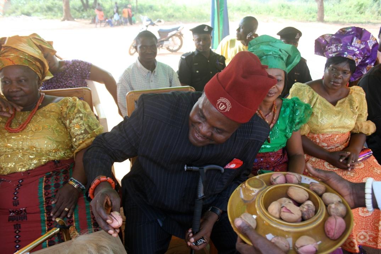 Kola Nut & The Igbo Culture