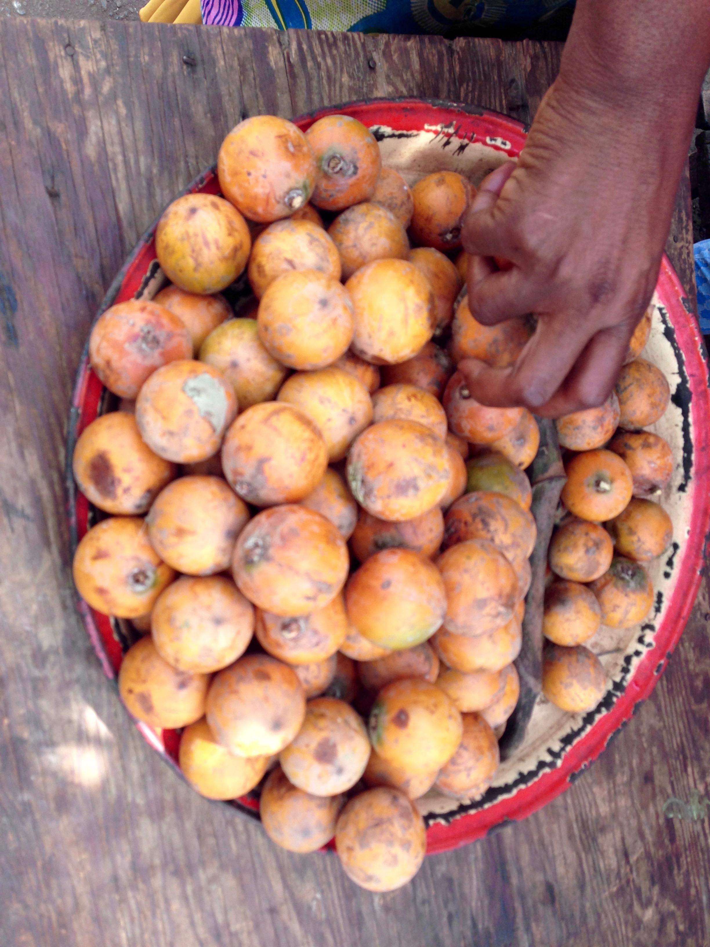 Agbalumo, African star apple, Atakumosa, Ilesa, Osun, Nigeria. #JujuFilms