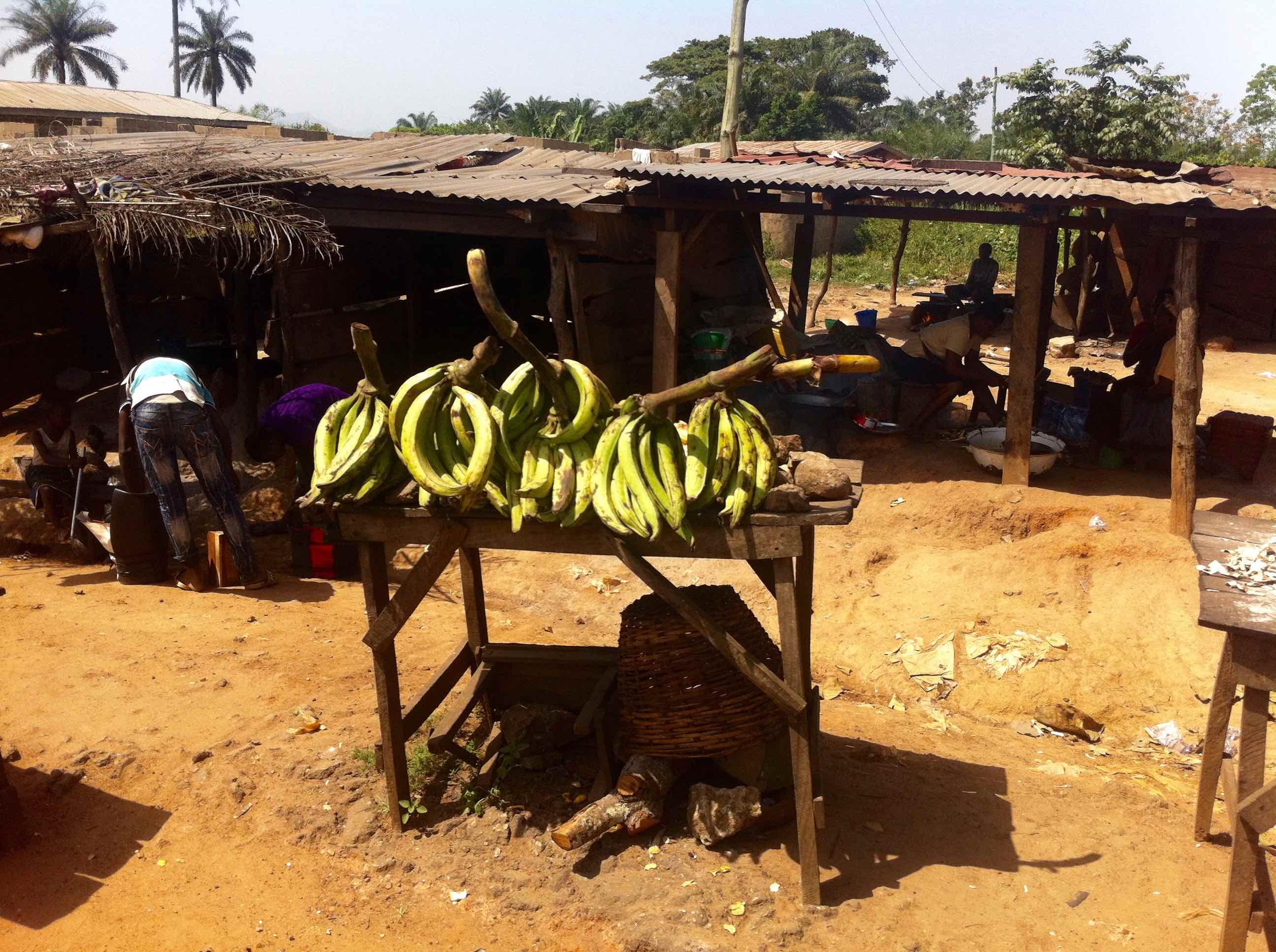 Green plantains, roadside market, Ibillo, Edo, Nigeria. #JujuFilms