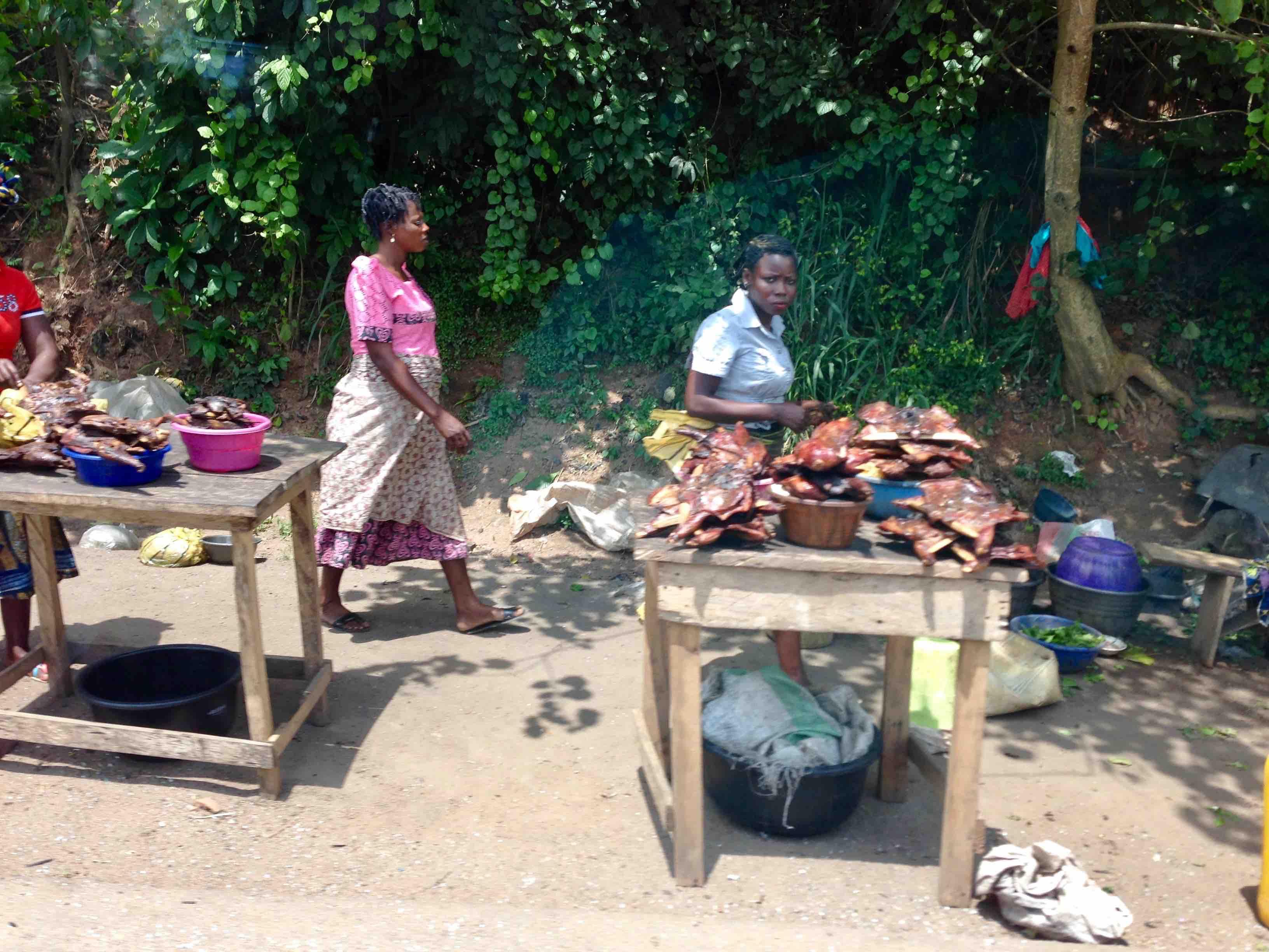 Women smoking bushmeat, Bushmeat Roadside Market, Ibadan - Ife Expressway, Osun, Nigeria. #JujuFilms