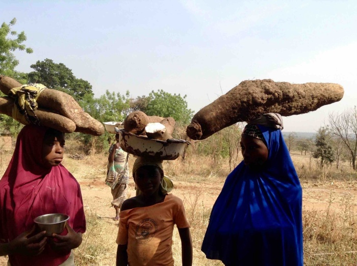 Fulani girls hawking African yams in Langa Langa Village, Nasarawa State, Nigeria. #JujuFilms