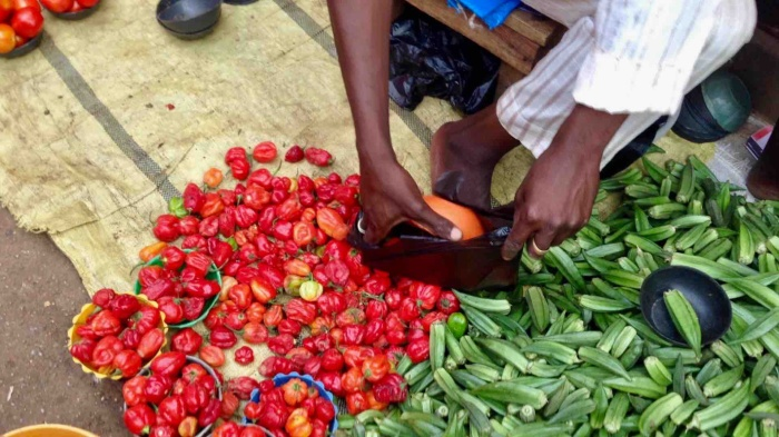 Tatashe peppers and okra, Dutse Market, Dutse, Nigeria #JujuFilms