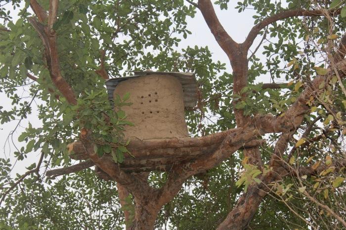 Beehive in Langa Langa Village, Nasarawa State, Nigeria. #JujuFilms