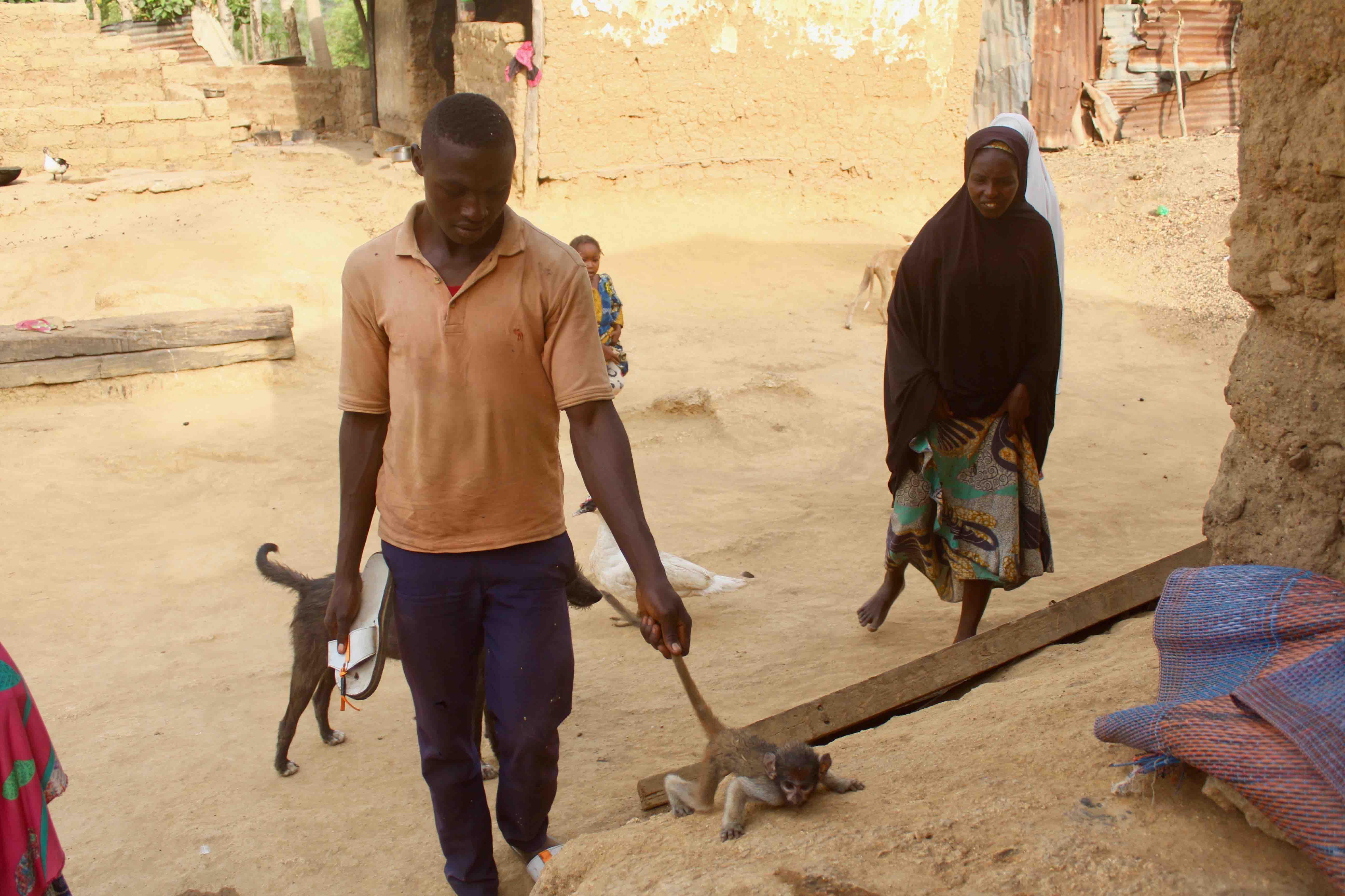 Orphaned baby monkey in Langa Langa Village, Nasarawa State, Nigeria. #JujuFilms